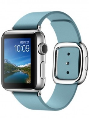 Apple Watch 38mm Stainless Steel Case with Blue Jay Modern Buckle